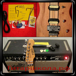 Гитара Ignatz от Fool Audio