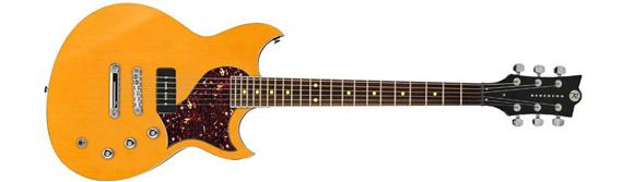 Описание гитары