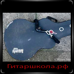 Коллекция гитар Уильяма Бека