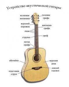устройство гитары и ее основные детали