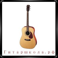 Советы по выбору и покупке акустической гитары
