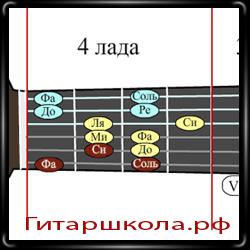Что такое ступени в музыке и на гитаре