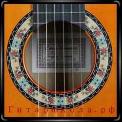ноты фламенко, скачать школы игры на гитаре