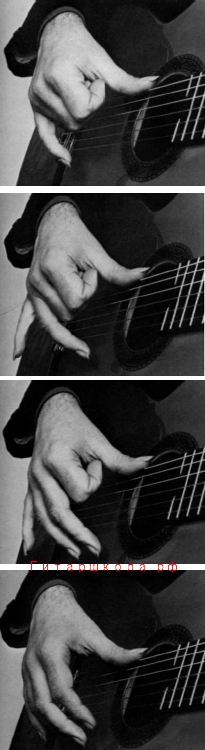 положение пальцев при четырёхзвучном расгеадо