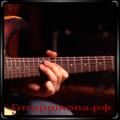 Правила постановки левой руки при игре на гитаре