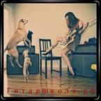 Девушка с гитарой, с собаками и кошкой